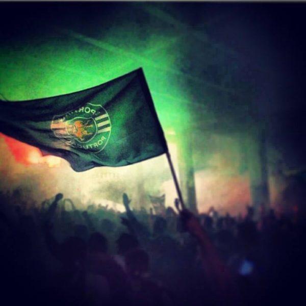 bandeira-verde